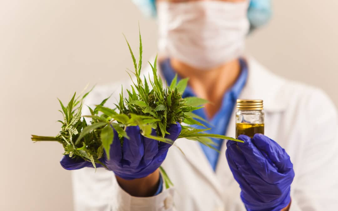 PBAC defers decision on PBS listing of Chiesi's unregistered medicinal cannabis product